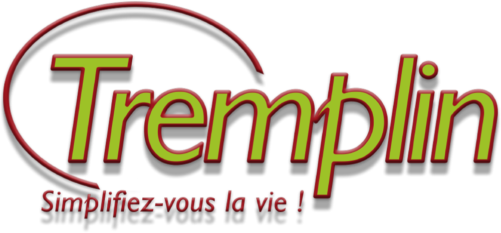 ASSOCIATION INTERMEDIAIRE TREMPLIN